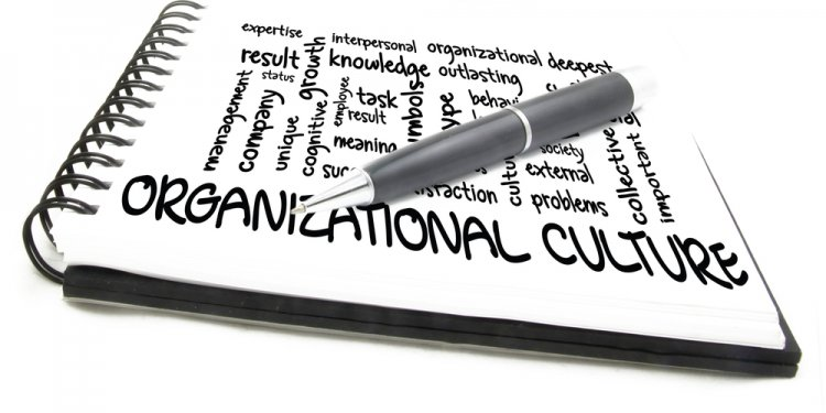 Organizational learning culture